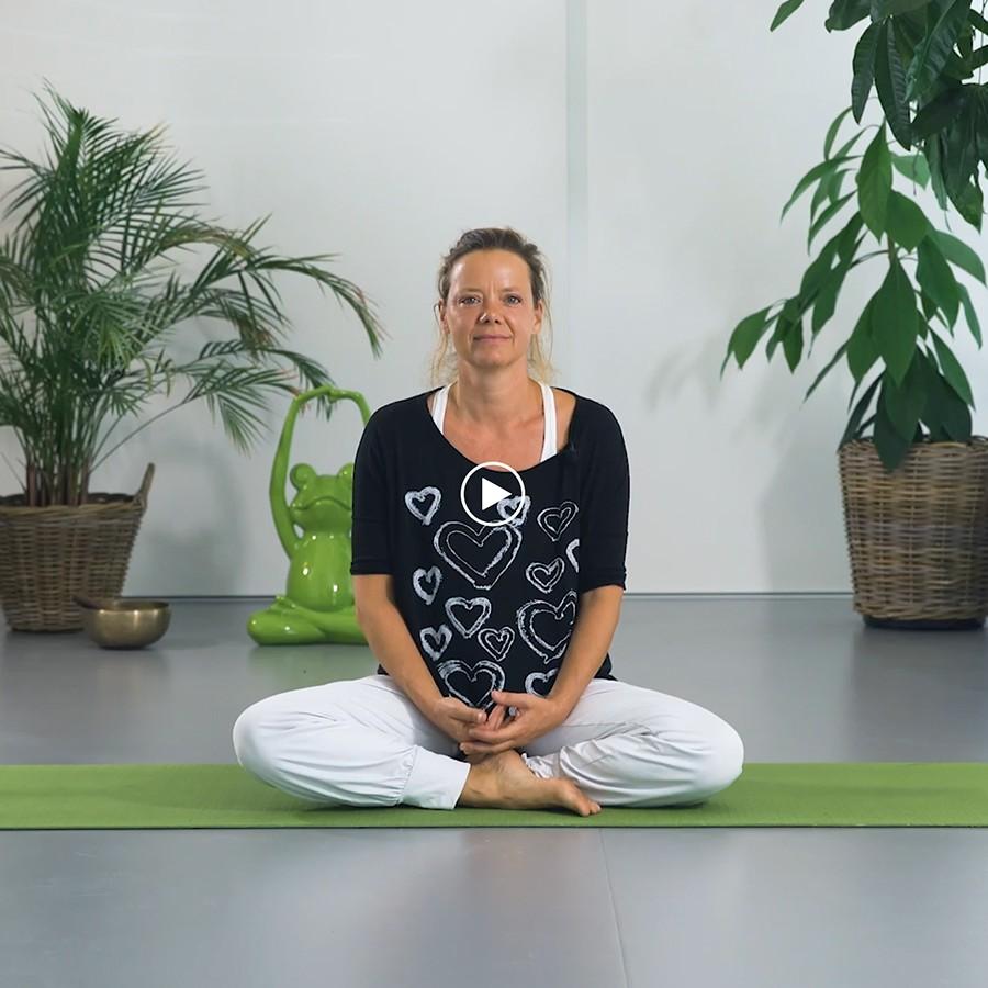 Back in balance kinesitherapie manuele therapie osteopathie en oosterse geneeskunde in Meise 00087